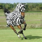 Bucas Buzz-Off Zebra and mask 16145