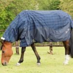 Mark Todd Lightweigt Turnout Rug