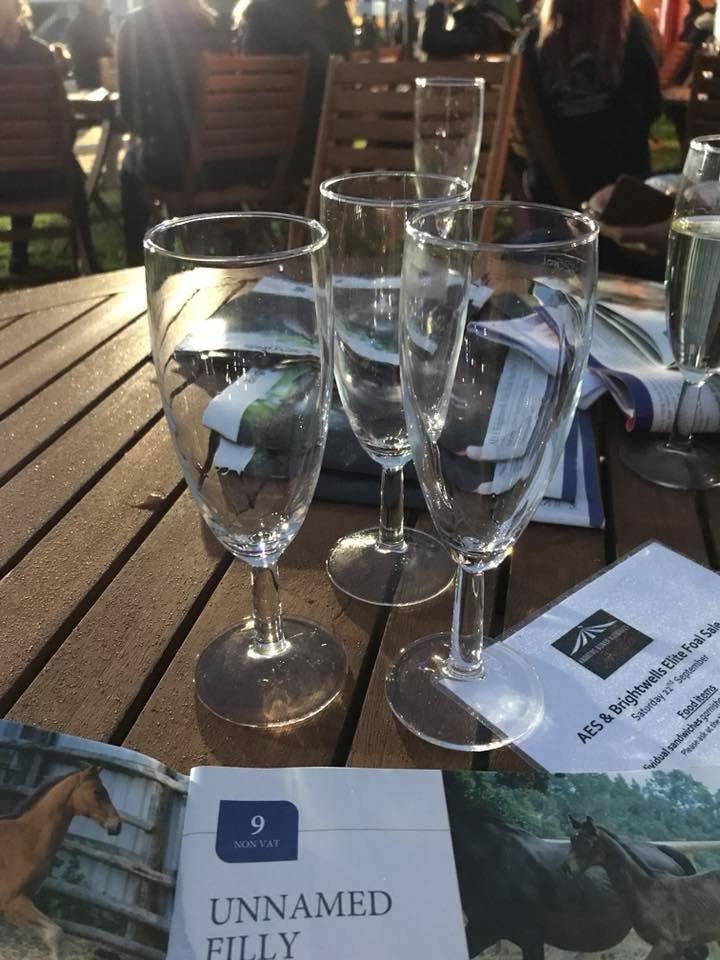 Brightwells-elite-foal-auction-champagne-auction-dressage-foals