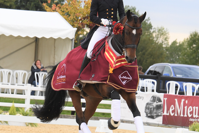 Lara Butler Grand Prix Lemieux National Dressage Champs Hudson Equine