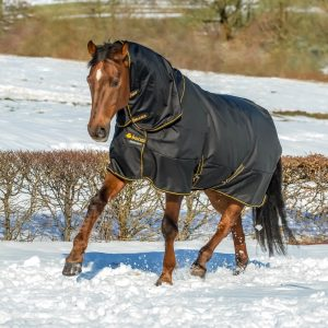 Bucas Irish Turnout & Combi Neck Black-Gold 2370