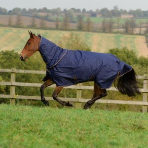 Bucas Irish Turnout & Combi Neck Navy 5467