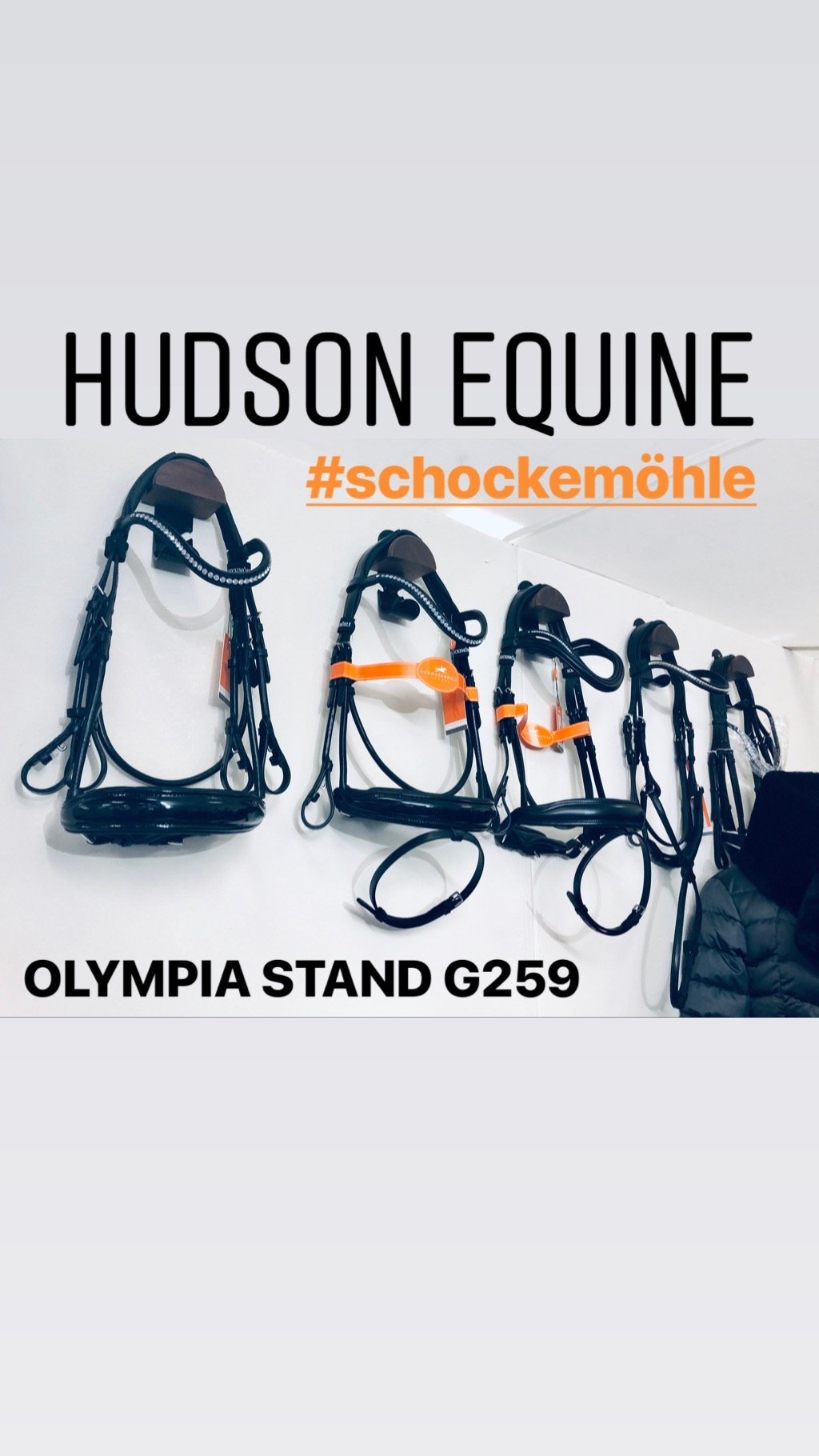 Hudson-equine-olympia-stand-schockemohle-sports