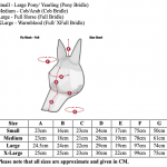 LeMieux-Armour-Shield-Size-Guide-With-Nose
