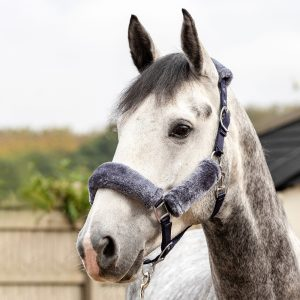 LeMieux-Comfort-Headcollar-Navy-Grey-Horse