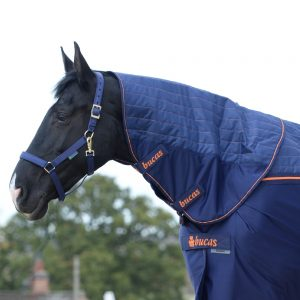 Bucas Recuptex Therapy Rug & Combi Neck Navy Orange 8299