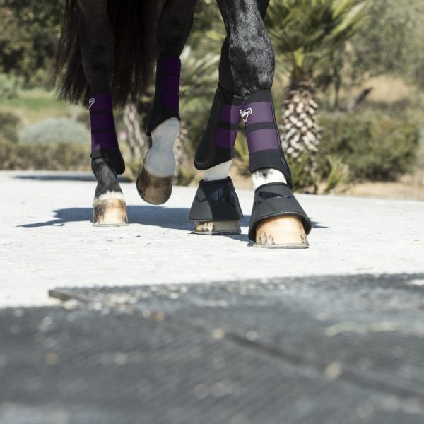 LeMieux blackcurrant grafter boots-HR