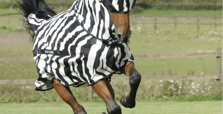 Bucas Buzz-Off Zebra and mask
