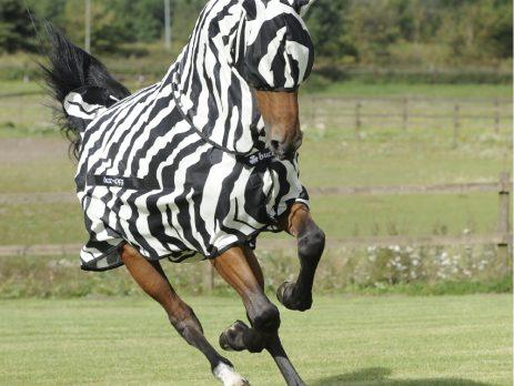 Bucas Buzz-Off Zebra and mask