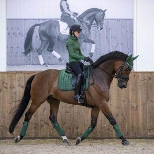 LeMieux-Polo-Bandages-Hunter-Green-Pony-Full-Large-Lifestyle-Image