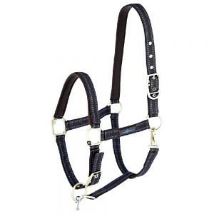 GoLeyGo-Headcollar-Brown-Light-Blue-1