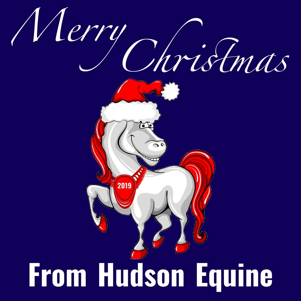 Merry christmas from hudson equine