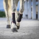 LeMieux-Carbon-Mesh-Wrap-Boots-Black-Mulberry-Lifestyle