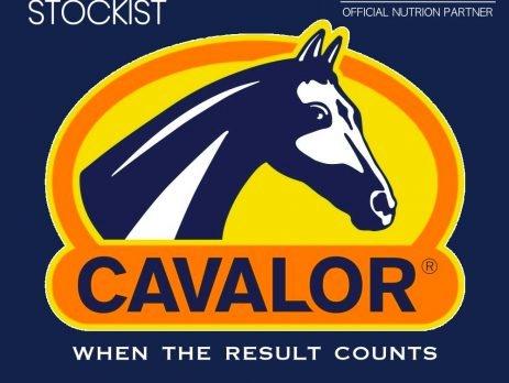 CAVALOR WEBSITE NEWS