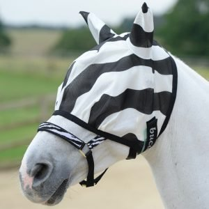 Fly Mask's