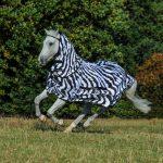 Bucas Sweet Itch Zebra 649 P0958
