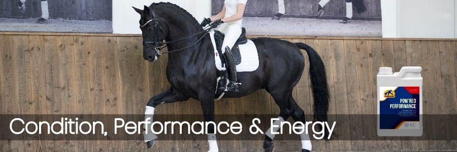 Condition, Performance & Energy