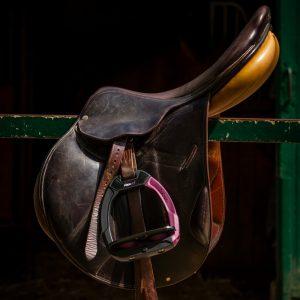 Flex-on-safe-on-stirrups-lifestyle-image-1