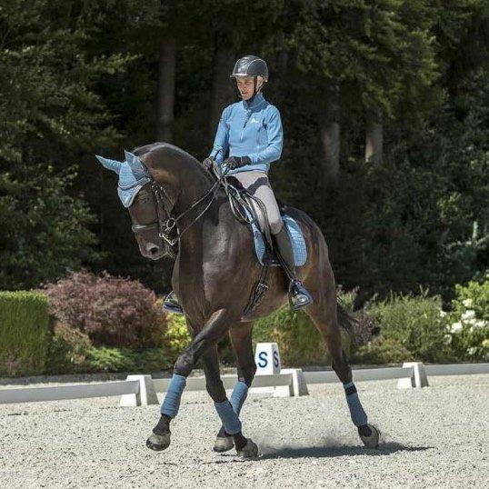 LeMieux-Polo-Bandages-Ice-Blue-Pony-Full-Large-Lifestyle-Image