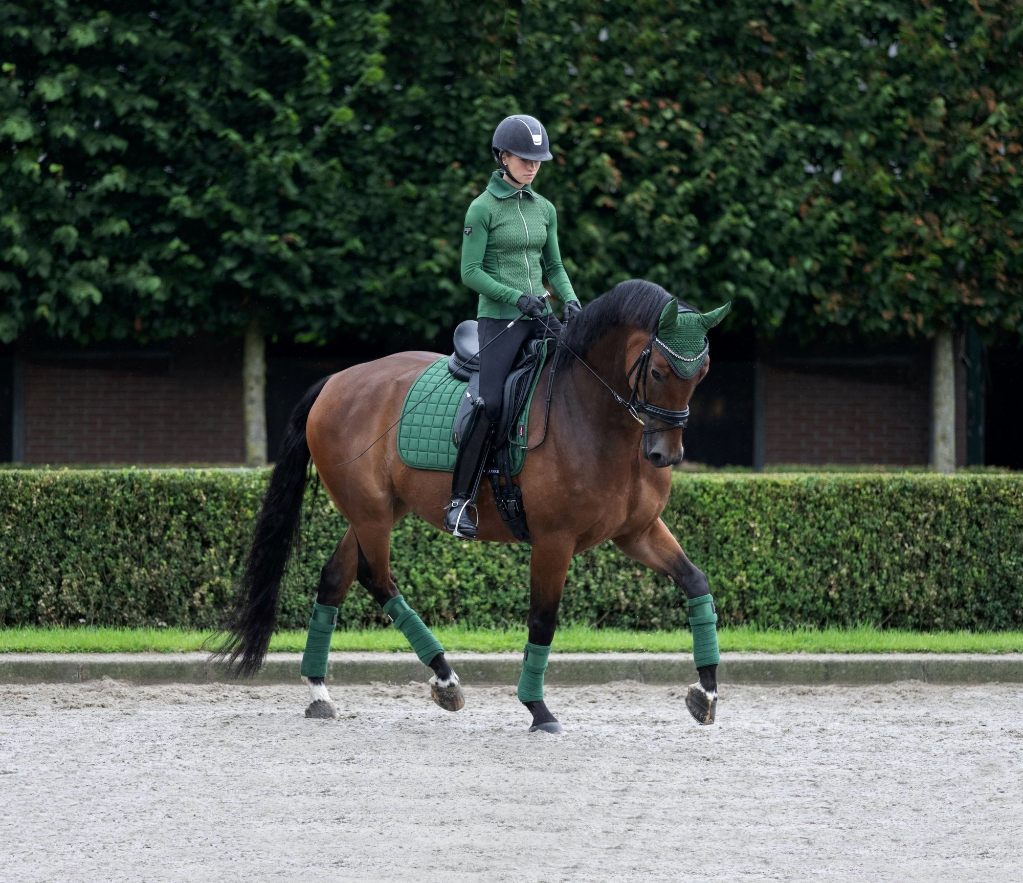 LoireDressage-HunterGreen-HR