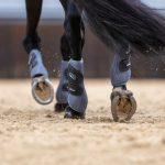 LeMieux-Carbon-Mesh-Wrap-Boots-Sage-Lifestyle