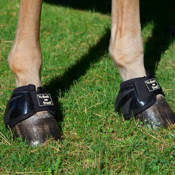 Back-on-Track-Equine-Bell-Boots-Performance-Black-2