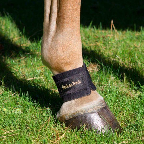 Back-on-Track-Equine-Pastern-Wraps-Black-4