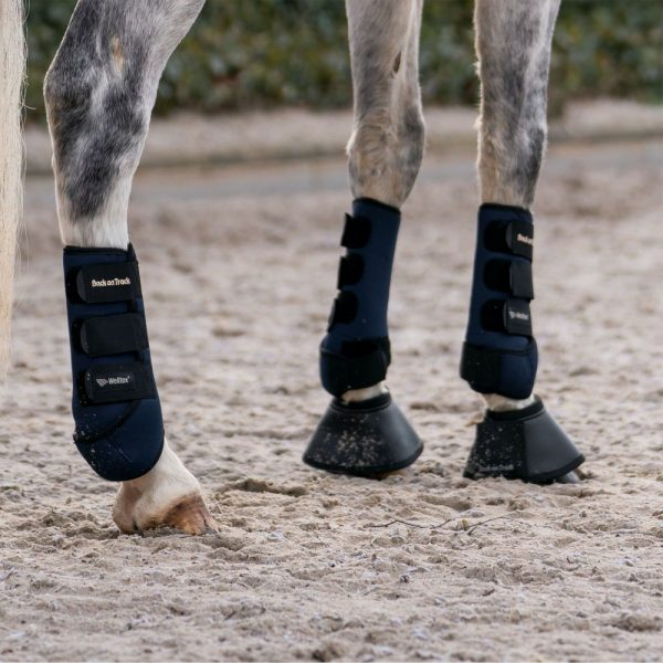 Back-on-Track-Opal-Exercise-Wraps-Boots-Blue-Lifestyle