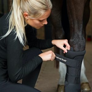 Back-on-Track-Royal-Equine-Quick-Wraps-Lifestyle