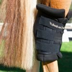 Back-on-Track-Royal-Hock-Boots-Black-Lifestyle-1