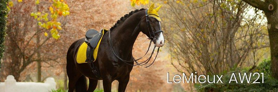 LeMieux AW21 Cover2