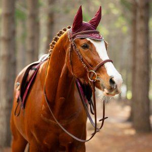 LeMieux-Classic-Fly-Hood-Rioja-Lifestyle-Image-1