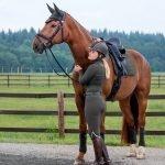 LeMieux-Suede-Saddle-Pad-Lifestyle-Image-1