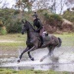 LeMieux-Suede-Saddle-Pad-Lifestyle-Image-4