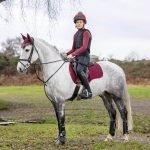 LeMieux-Suede-Saddle-Pad-Rioja-Lifestyle-Image-2